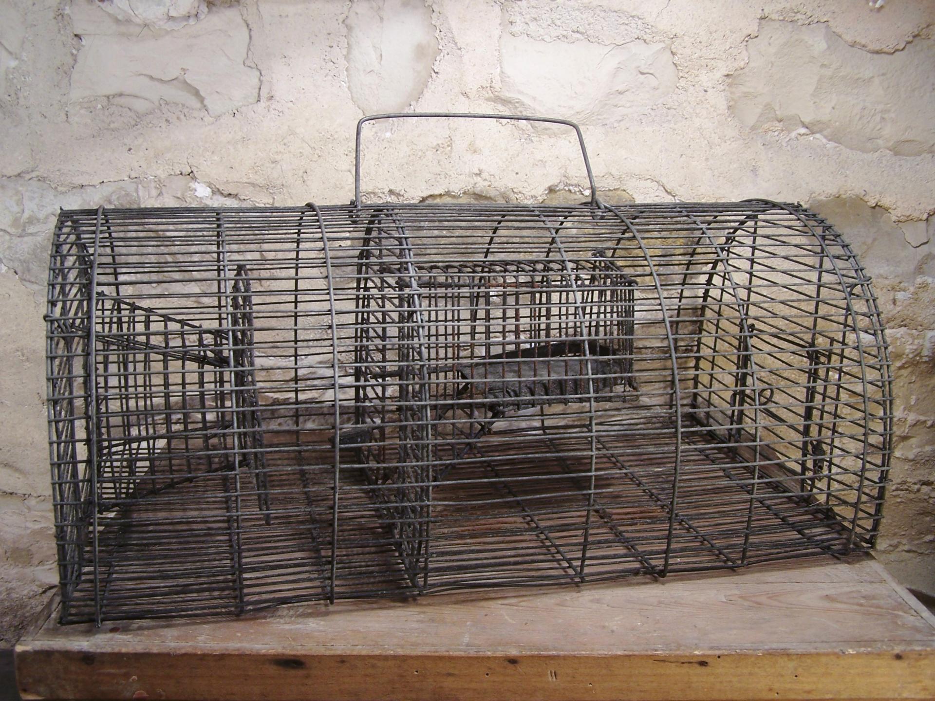 ancienne cage en fil de fer pi ge souris cage souris. Black Bedroom Furniture Sets. Home Design Ideas