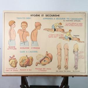 0 affiche anatomie 14