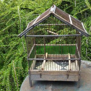 0 cage a oiseaux