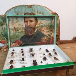 01 boite a insectes 2