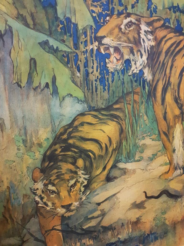 01 tableau scolaire les tigres