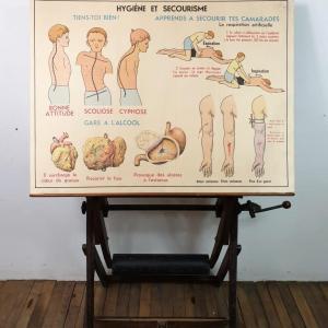 1 affiche anatomie 14