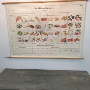 1 affiche d ecole allemande les vitamines