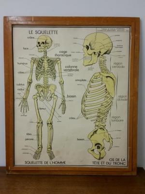 Affiche Rossignol