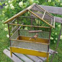 1 cage a oiseau