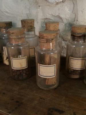 1 collection de graines