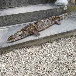Crocodile de jardin