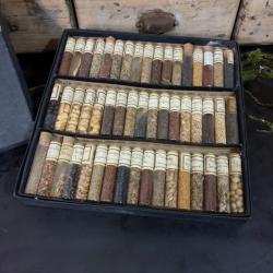Collection de graines