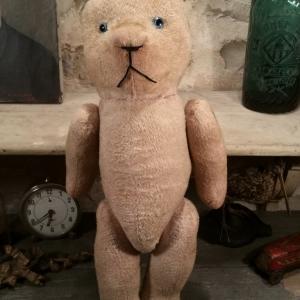 1 ours en peluche
