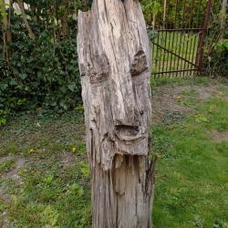 Arbre Sculpté