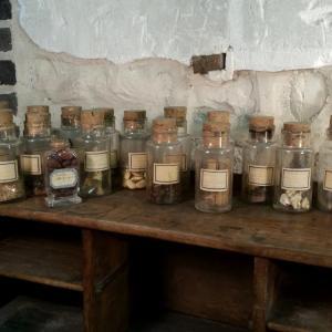 2 collection de graines
