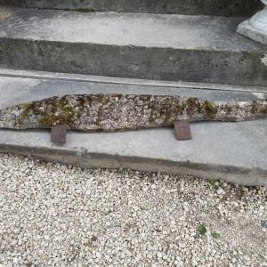 2 crocodile