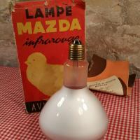 2 lampe de couveuse infrarouge