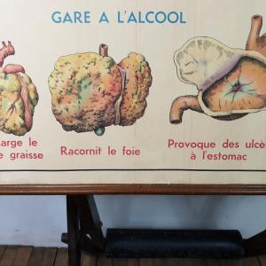 3 affiche anatomie 14