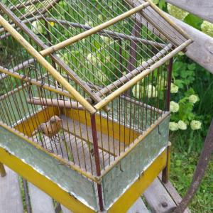 4 cage a oiseau