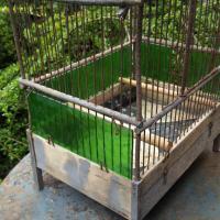 4 cage a oiseaux