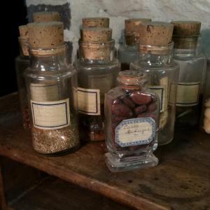 4 collection de graines