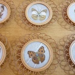 Sous-verres Papillons