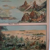 5 affiche scolaire geographie