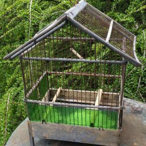 5 cage a oiseaux