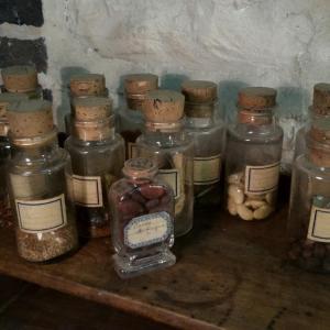 5 collection de graines