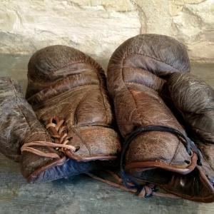 5 gants de boxe