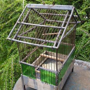 6 cage a oiseaux