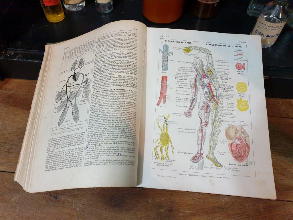 6 larousse medical illustre