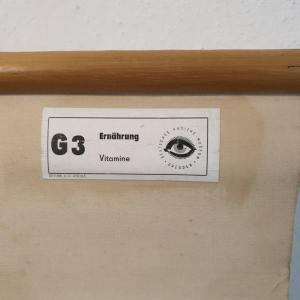 7 affiche d ecole allemande les vitamines