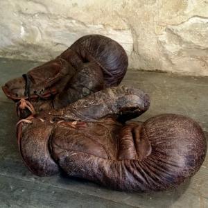 7 gants de boxe