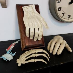 7 main d etude medecine