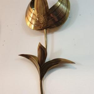 8 appliques tulipes laiton