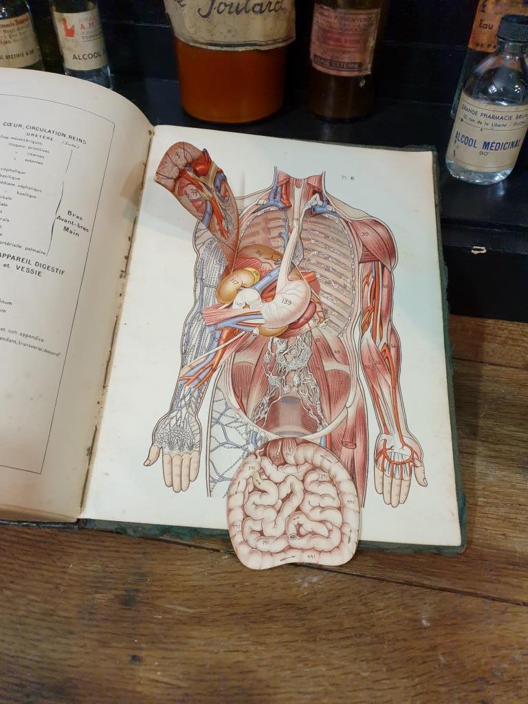 8 larousse medical illustre 1